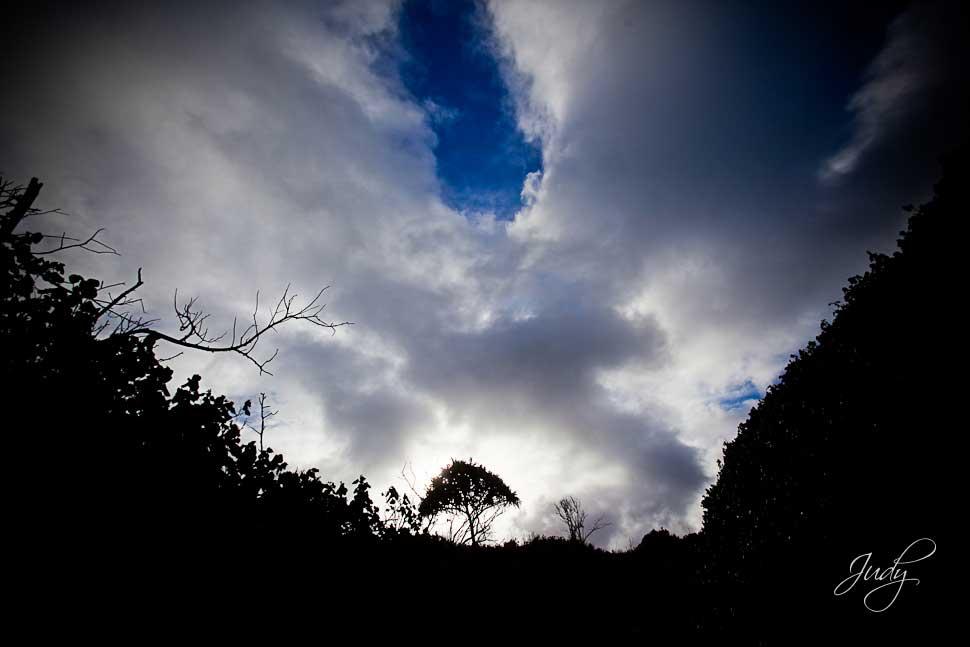 Heaven on Earth   Beautiful Island of Maui