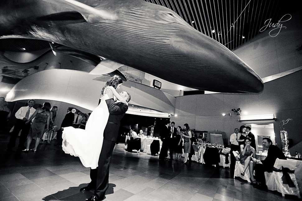 Aquarium of the Pacific Wedding Reception