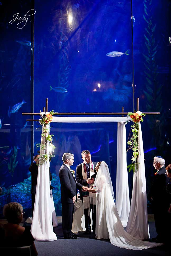 Aquarium of the Pacific Jewish Wedding Ceremony