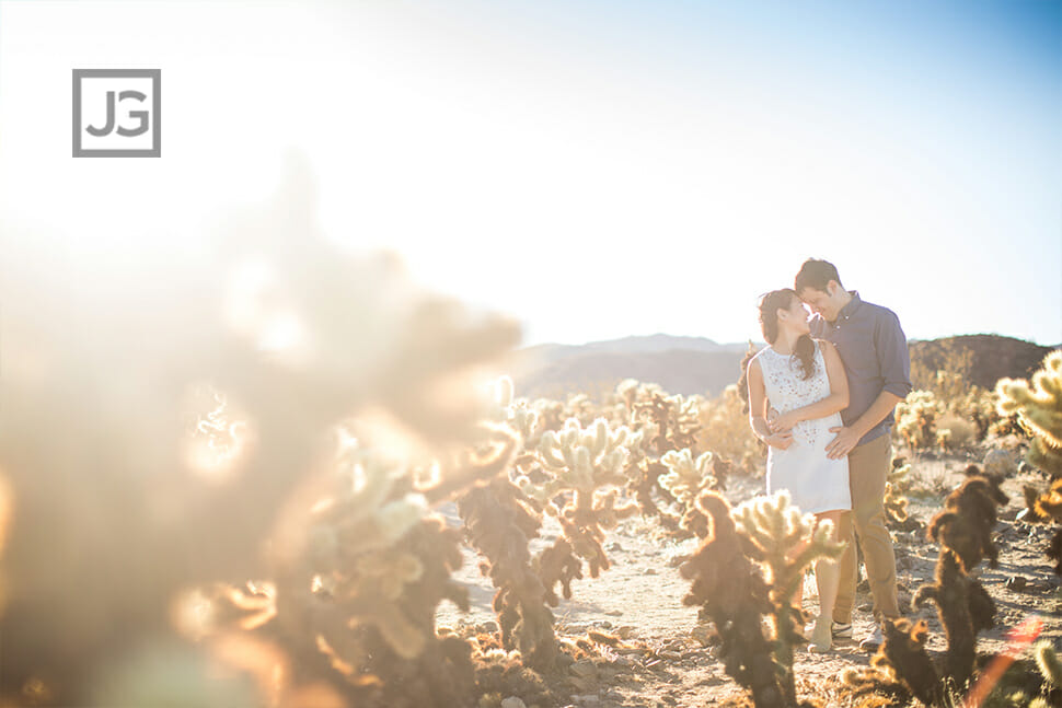 Joshua Tree Engagement Photos with Cactus