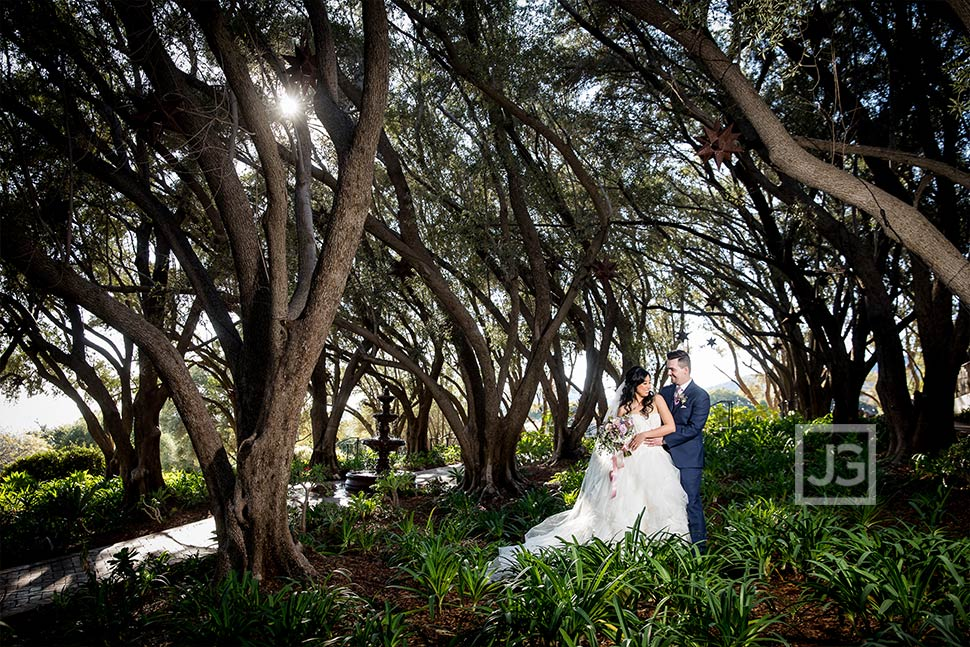 Olive Orchard Wedding Photo