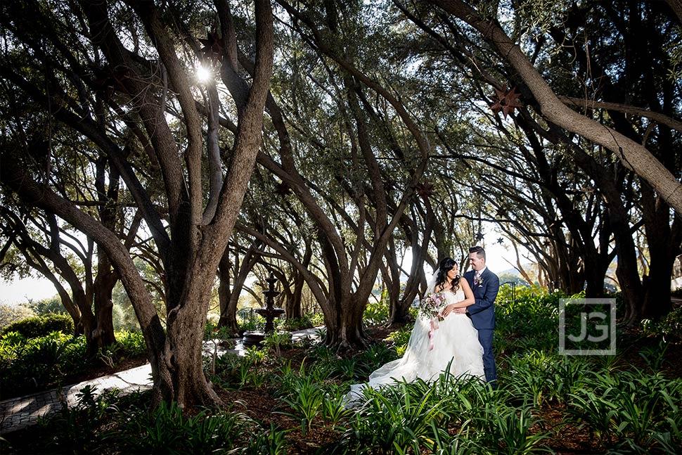 Olive Orchard Wedding Photo