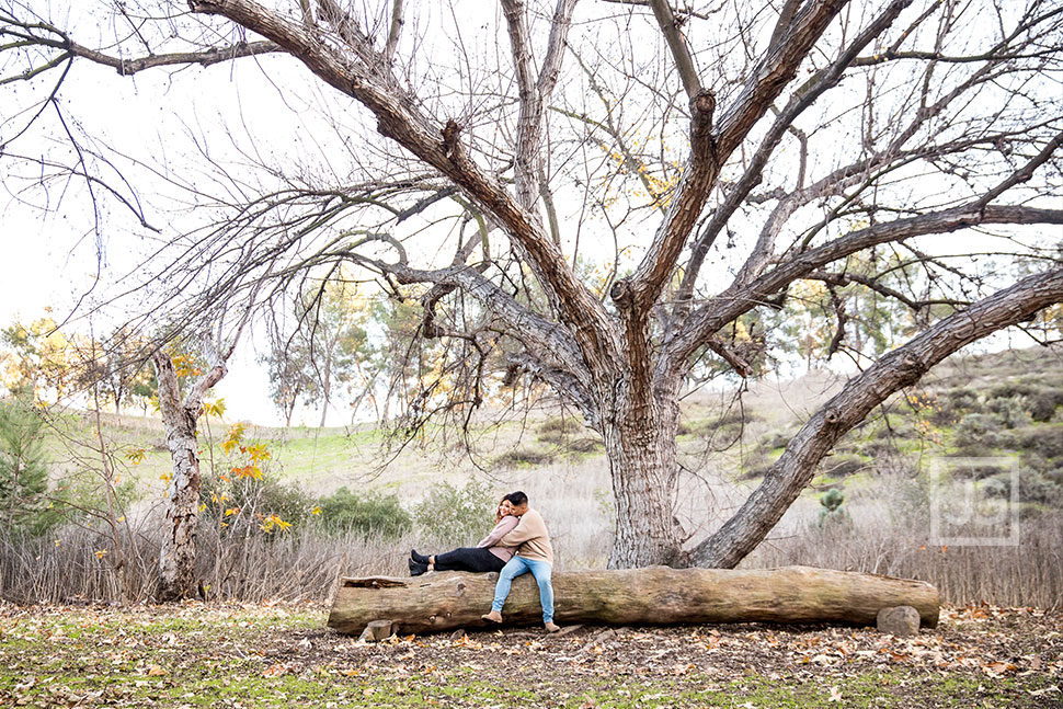Bonelli Park Engagement Photography with a Large Log