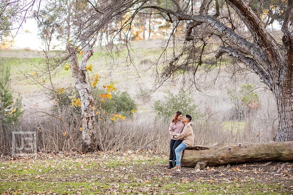Bonelli Park Engagement Photography under a Tree