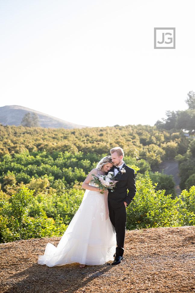 Quail Ranch Wedding Photos Avocado Orchard