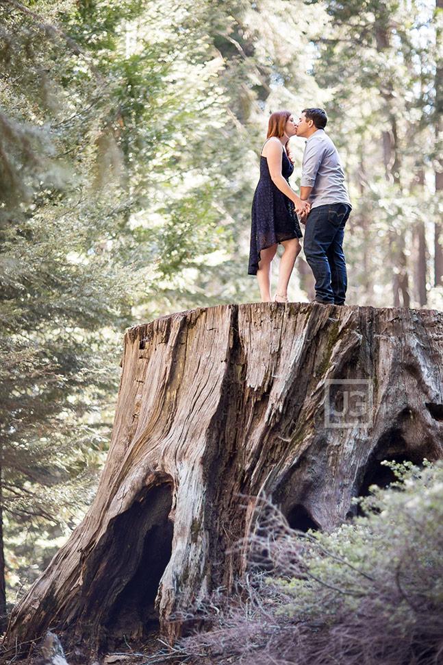 Engagement Photo on Tree Stump