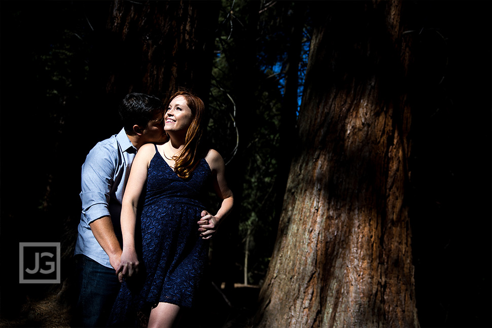 Dramatic Engagement Photo in the Forest