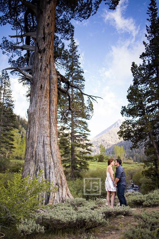 Sierra Nevada Engagement Photography