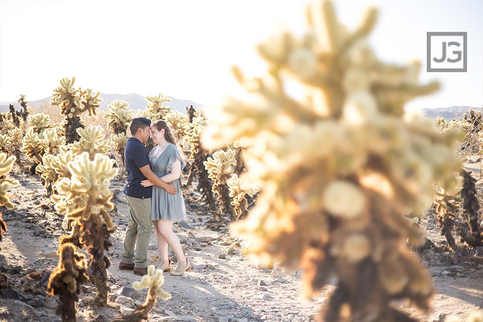 Cholla Cactus Garden Engagement Photos