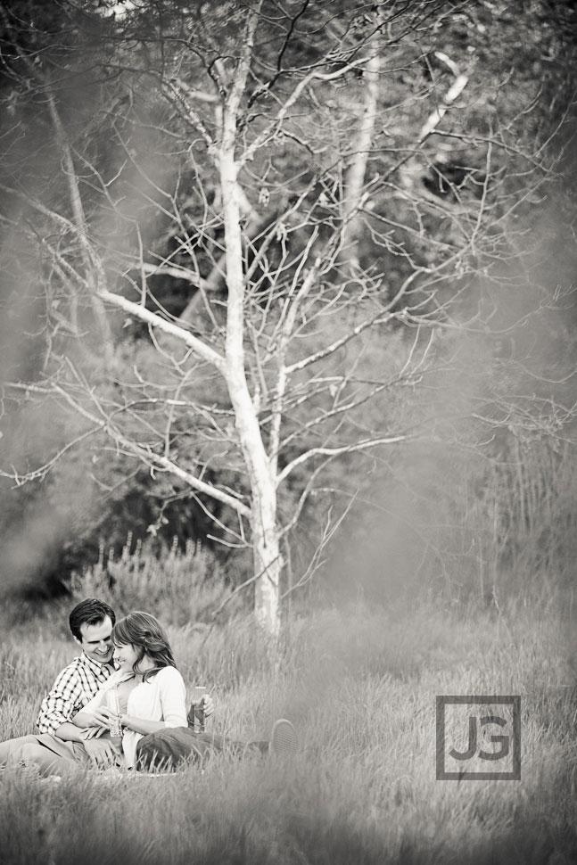 Pasadena Engagement Photos Picnic in a Field