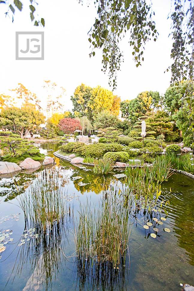 CSULB Japanese Gardens
