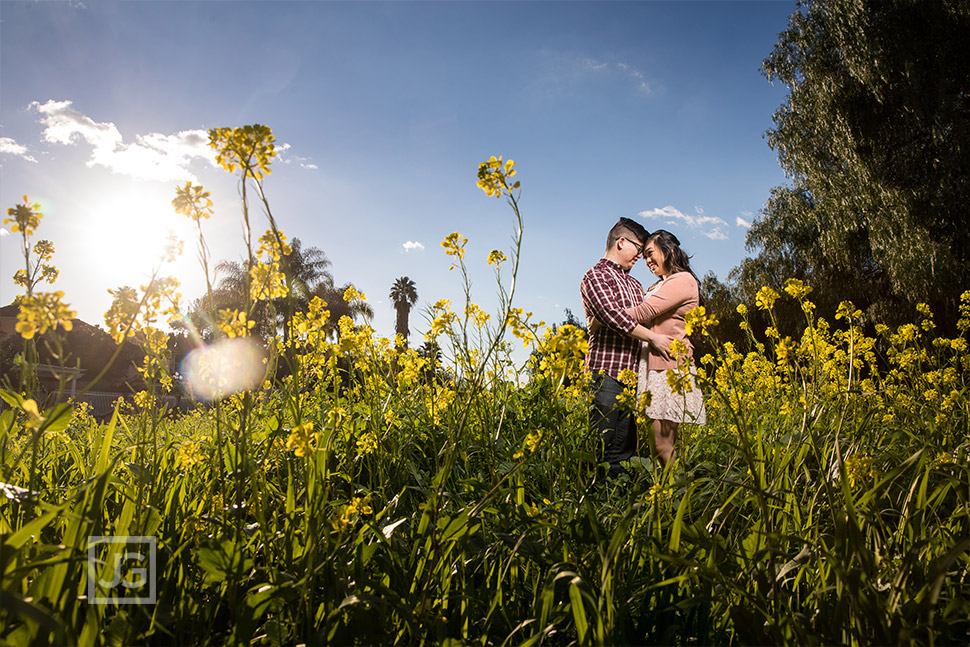 Yellow Flowers engagement photo with a blue sky