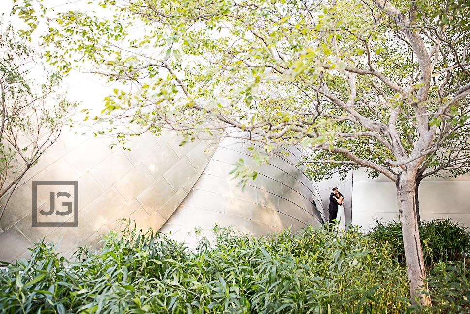 Walt Disney Concert Hall with Trees