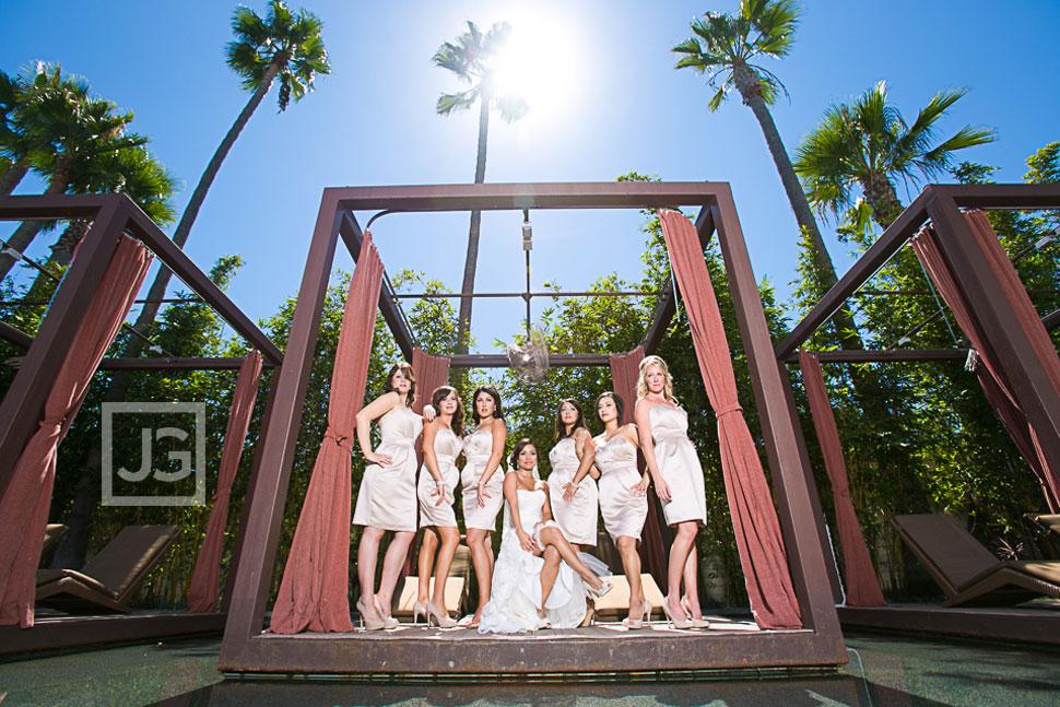 Bridesmaids Wedding Party Photos