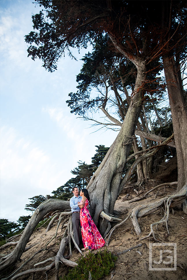 Exposed tree roots engagement photography