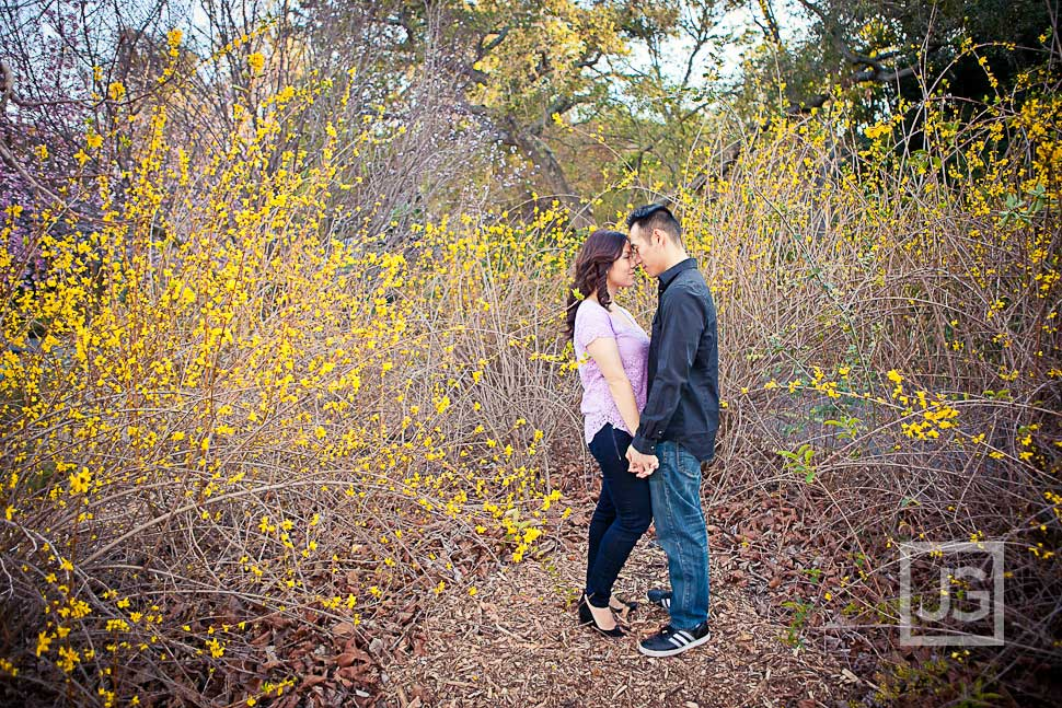 Los Angeles Arboretum Engagement Photos