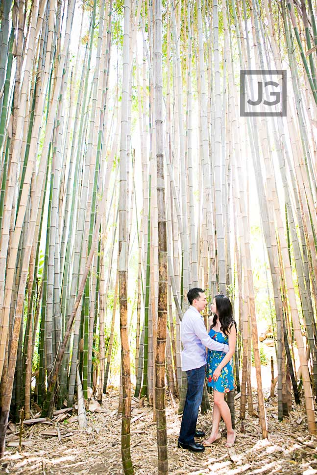 Engagement Photos with Bamboo