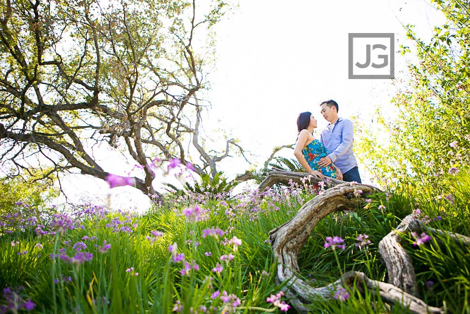Engagement Photos Los Angeles Arboretum