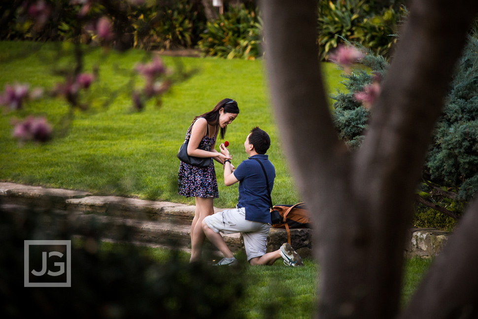 Santa Barbara Courthouse Engagement Proposal