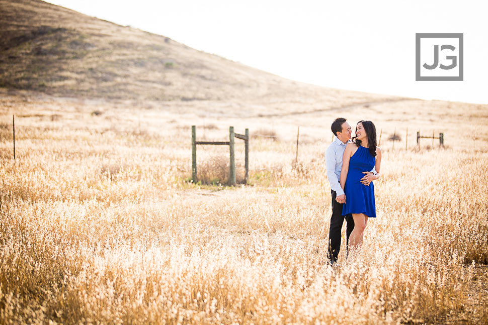 Golden Field Engagement Photography