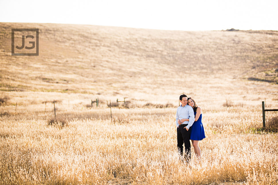 Golden Field Engagement Photos
