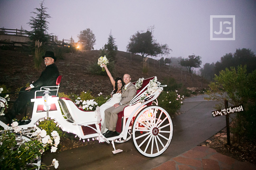 Serendipity Garden Wedding Carriage